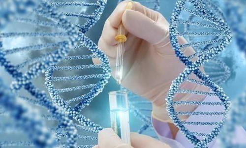 泰国第三代试管婴儿防止遗传病